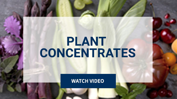 Plant Concentrates. Watch Video. Background image shows purple, white and red plants.
