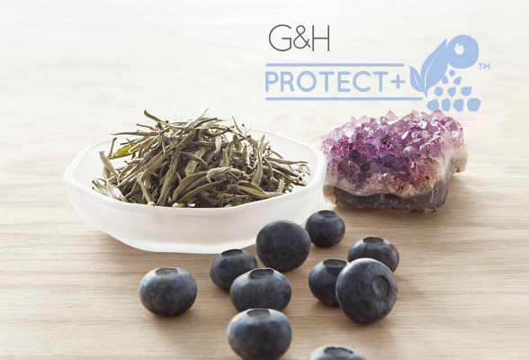 G&H Protect+™ naturally-inspired ingredients: dried white tea leaves, bilberries and an amethyst crystal.