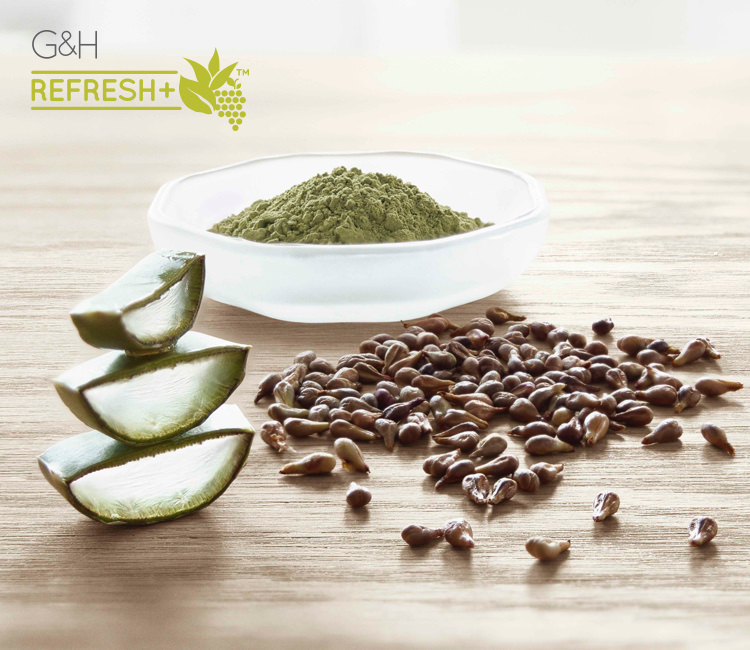 G&H Refresh+™ naturally-inspired ingredients: fresh aloe vera leaves, green tea powder, grape seeds.