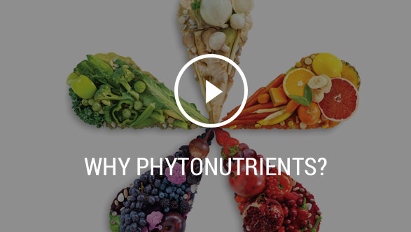Why Phytonutrients? Play button for video. Background image shows fruits and vegetables organized by color, in a five teardrop star shape.